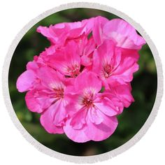 Pink Round Beach Towel featuring the photograph Pink Blossoms by Cynthia Guinn