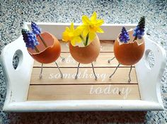 Goodmorning! Anticipating spring with my breakfast  #goodmorning #bomdia #buenas #goedemorgen #breakfast #eggs #eggshell #getcreative #flowers #daffodils #grapehyacinth #muscari #urbangardening #urbangarden #organic #vase #plants #plantlovers #nature #naturelovers #instaflower #instagarden #gardenlove #indoorgarden #botanics #creative #spring #colorful #colour #ovo
