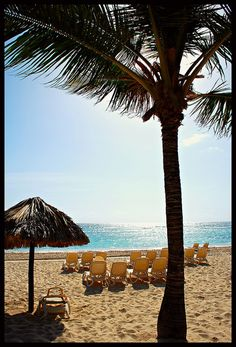 Punta Cana 2012 by stephg74956, via Flickr