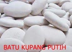 Batu Kupang Putih