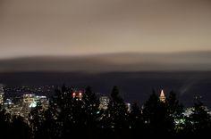 Bloedel Conservatory Queen Elizabeth Park, via Flickr.