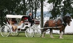 Add a horse drawn carriage ride or a cruise in summer to make the day unique.