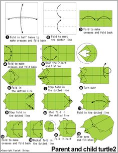 how to make a turtle in alxemy