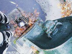 Buongiorno Torino #torinoèlamiacittà #torino #torinopics #igersitalia #igerstorino
