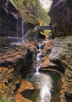 Watkins Glen State Park in New York state is the most famous of the Finger Lakes State Parks, with a reputation for leaving visitors