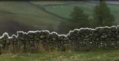 Andy Goldsworthy, sheep's wool on a drystone wall