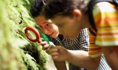 Ser escoteiro pode trazer muitos benefícios para o desenvolvimento das crianças...