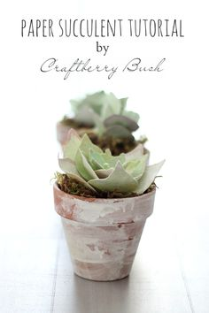 Paper succulent tutorial - Craftberry Bush