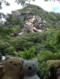 クマ散歩:昇仙峡に品行方正なクマ出没 (覚円峰 Kakuenpo Peak) The Bear took a walk up Shosenkyo Gorge!♪☆(^O^)/  #昇仙峡#品行方正#Bear
