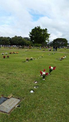Cementerio Las Flores