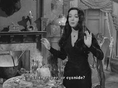 my gif vintage horror gifset the addams family carolyn jones Gomez Addams Morticia Addams John Astin Addams Family Lurch Learns to Dance