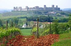 Horseback Riding and Wine Tasting in Chianti Italy from Florence