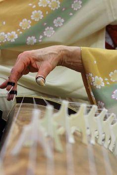 """Japanese musical instrument, Koto 琴 "" Japanese Style, Japanese Art, Japanese Geisha, Koto Instrument, All About Japan, Memoirs Of A Geisha, Turning Japanese, Art Japonais, Nihon"