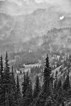 Shrouded,Crystal Mountain, Washington, US.