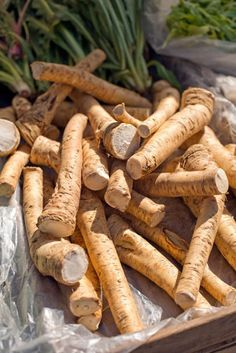 Horseradish is a hardy perennial known for its pungent root, which has endless culinary possibilities. Learn how grow, harvest, and prepare horseradish, plus get ideas for different ways to put your homegrown horseradish to use in the kitchen. Growing Horseradish, Root Vegetables, Fruits And Veggies, Healthy Style, Growing Gardens, Healing Herbs, Natural Medicine, Diet