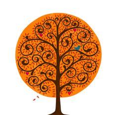 Tumtum Tree Autumn | Flickr - Photo Sharing!