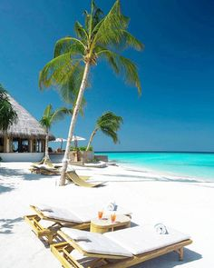 The most detailed travel guide about the Maldives for every budget! Learn everything about the Maldives and plan your the best vacation! Vacation Places, Vacation Destinations, Dream Vacations, Vacation Spots, Places To Travel, Places To Visit, Photos Voyages, Best Hotels, Amazing Hotels