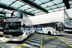 Malpensa bus stops