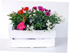 Floral Wreath, Wreaths, Poncho, Anna, Home Decor, Portion Plate, Flower Crowns, Door Wreaths, Deco Mesh Wreaths