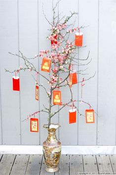 Tet (Vietnamese New Year) Decoration Inspiration.