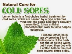 Health is Wealth: Home remedies for treating cold sores naturally