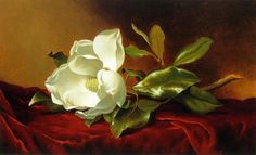 A MAGNOLIA ON RED VELVET, BY MARTIN JOHNSON HEADE