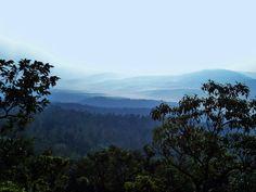 Places to visit/ see around Bababudangiri (Dattapeeta) in Chikmagalur: Bababudangiri landscapes; waterfalls, road, coffee estates, photos & pictures, trek, map