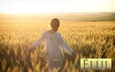 Elul - The King is in the Field