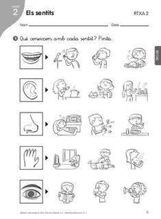 Ref i ampl medi Five Senses Preschool, Senses Activities, Science Activities, Educational Activities, Social Studies Worksheets, Science Worksheets, Kindergarten Worksheets, Five Senses Worksheet, Nursery Rhymes Preschool
