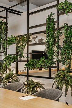 View the full picture gallery of Ondatel House Plants Decor, Plant Decor, Office Interior Design, Office Interiors, Wall Design, House Design, Decoration Plante, Partition Design, Interior Plants