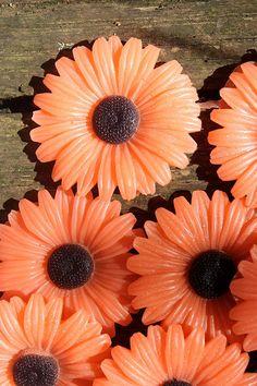 Autumn Gerber Daisy Set of 10 Soap Favors Love by daisycakessoap, $24.00