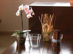 Mitu Visión - Mitu vision transparent pot  Medidas - Size: Ref.13802403 Ø 14 (cm.14 x 125 h.) lt 11 Ref.13802404 Ø 16 (cm.16 x 14 h.) lt 17  #decoracion#decor#home #homeandgarden#florist#floristeria #instadecor#pottery#casa#casayjardin #pot#decoration#deco#decoração#casayjardin#casa #homeandgarden#home#jardin#florist #floristeria#macetas #housedecor#florista#plantas#plants #plant#floreria#plantbox #jardinera#jardineria #cachepot #homedesing #myhome