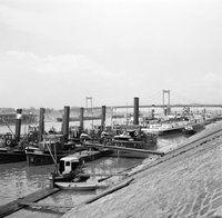 1954 Stoomsleepboten aangemeerd in de haven Duisburg-Ruhrort waaronder de slepers Damco, Rhein, Ruhr en Pionier