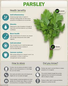 The surprising health benefits of herbs: from calcium to antioxidants Herbs For Health, Healthy Herbs, Health Benefits Of Basil, Benefits Of Parsley, Vegan Nutrition, Health And Nutrition, Health Facts, Natural Health Remedies, Herbal Remedies