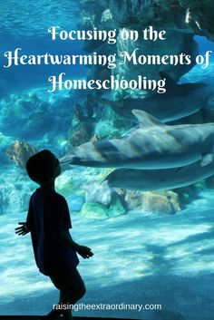 FOCUSING ON THE HEARTWARMING MOMENTS OF HOMESCHOOLING