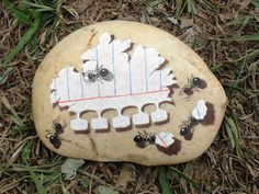 WOW!!!  Ants eating notebook paper.  PedraBrasil: Pedras pintadas Painted Pavers, Painted Rocks Craft, Hand Painted Rocks, Painted Pebbles, Painted Stones, Pebble Painting, Pebble Art, Stone Painting, Stone Crafts