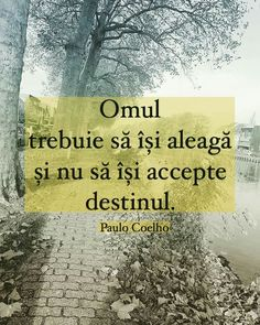 Educational Websites, Wisdom, Thoughts, Quotes, Books, Life, Paulo Coelho, Frases, Quotations
