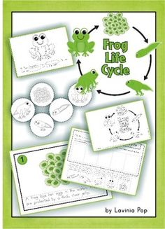 Frog Life Cycle - a mini cut and paste unit
