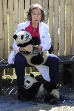 The 25 Best Panda Photos Of 2011