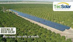 Con los sistemas de riego solar todos tenemos más vida para el planeta  #TecSolar piensa en un mundo mejor  Cel: 316 600 0835 - 320 695 2450 Dir: Cra. 12 N13b - 02 Correo: contacto@tecsolar.co  #PostesSolar #AlumbradoPúblicoSolar #Casa #Hogar #Ciudad #Calle #PanelSolar #Posteconluzsolar #Campo #MedioAmbiente #EnergíaFotovoltáica #EnergíaSolar #Sostenibilidad #Unmundomejor #paneleslares #luminarias #solar #energy #autosostenible #valledupar #soyvalledupar #SoyAmigodelMedioAmbiente #monteria…