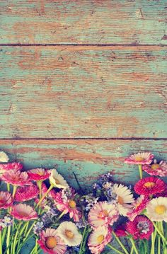 Wooden, fence, flowers, vintage