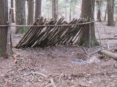 Bushcraft Skills - Basic Shelters