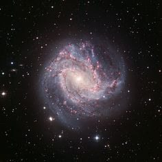 The Southern Pinwheel Galaxy from the Canada France Hawaii Telescope. Careers In Astronomy, Space And Astronomy, Infinite Universe, Astronomy Pictures, Hubble Space Telescope, Space Images, To Infinity And Beyond, Deep Space, Space Exploration