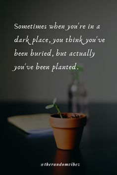 Sometimes when you're in a dark place, you think you've been buried, but actually you've been planted. Check the collection of inspirational change quotes about life. #changequotes #inspirationallifequotes #deepquoteslife #deepmeaningfulquotes #lifequotesinspiring #dailyquotes #morninginspiration #morningquotes #goodvibes #goodvibesquotes Inspirational Quotes About Change, Change Quotes, Inspiring Quotes About Life, Meaningful Quotes, Good Vibes Quotes, Soul Quotes, Life Quotes, Leo Buscaglia, Norman Vincent Peale