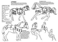 Historic Horse Power - How to Draw Horses