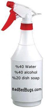 bedbug spray non-toxic