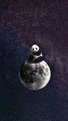 This panda bear will love you to the moon and back. Panda art by the insanely talented Panda Wallpaper Iphone, Cute Panda Wallpaper, Panda Wallpapers, Bear Wallpaper, Animal Wallpaper, Galaxy Wallpaper, Cute Wallpapers, Wallpaper Backgrounds, Just Do It Wallpapers