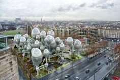 Planning Korea se inspira no mundo microbiano para pensar o futuro de Paris