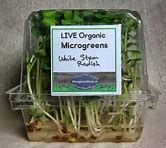 Image result for microgreen packaging ideas