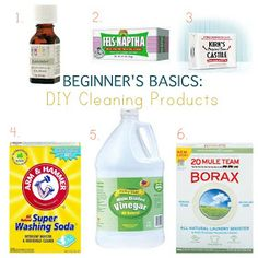 Nicole Joelle : DIY Clean: Beginner Basics for DIY Cleaning Products
